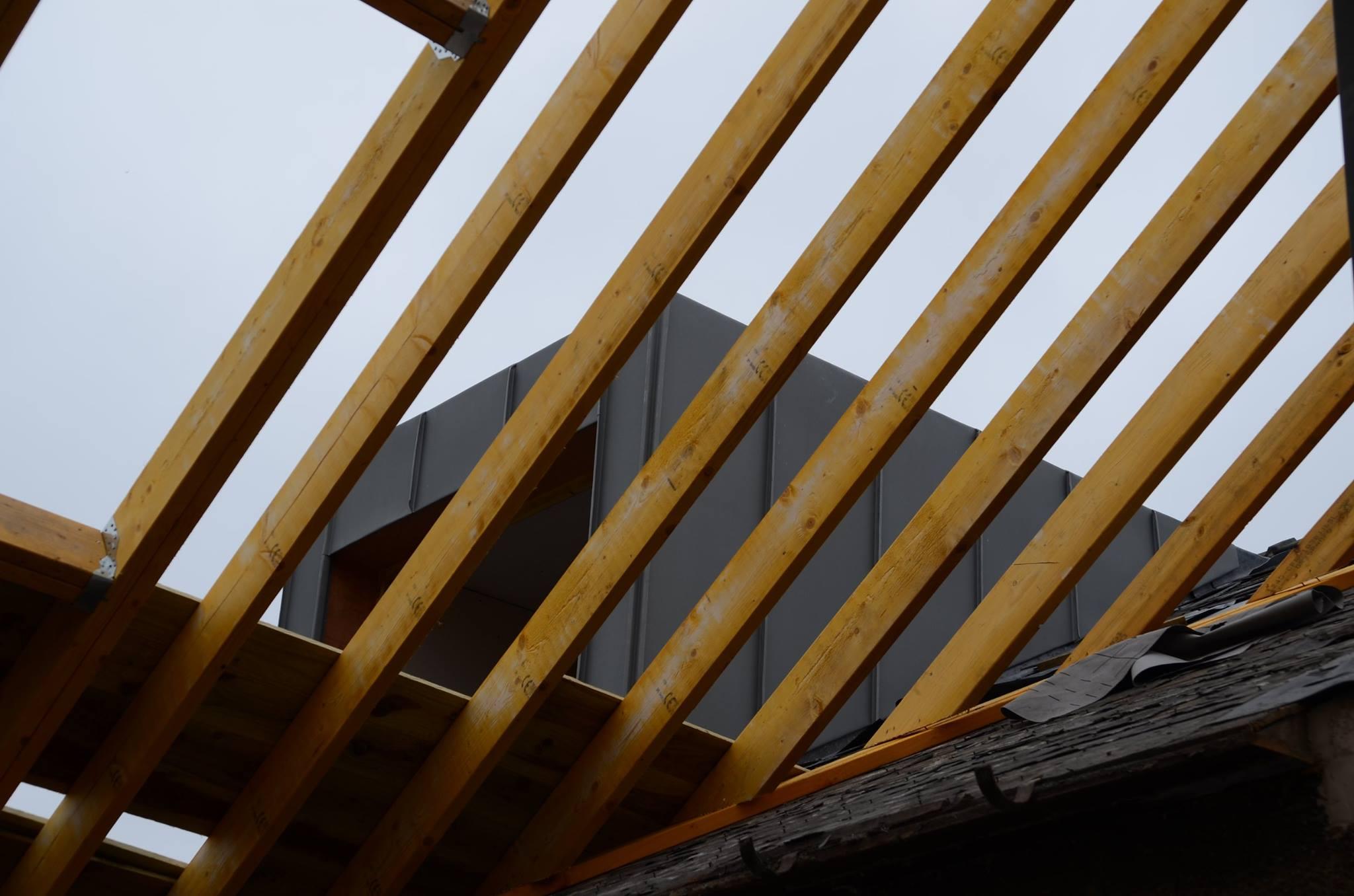 Modern Living House Extension 10.jpg