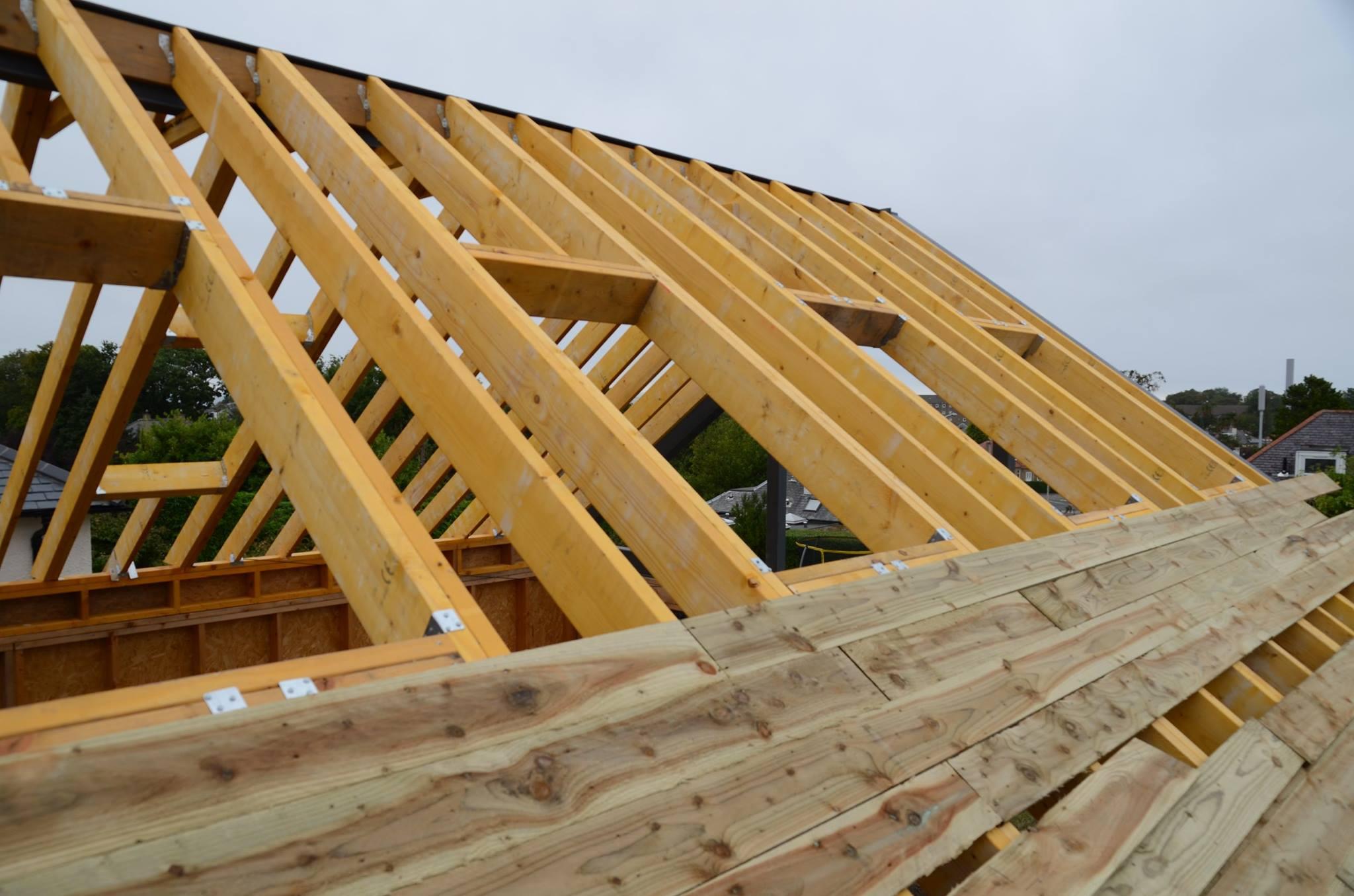 Modern Living House Extension 12.jpg