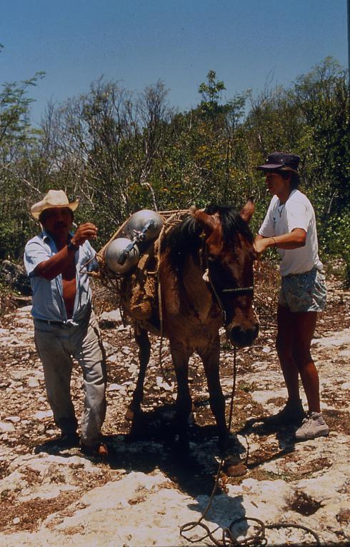 4-89 loading horses.jpg