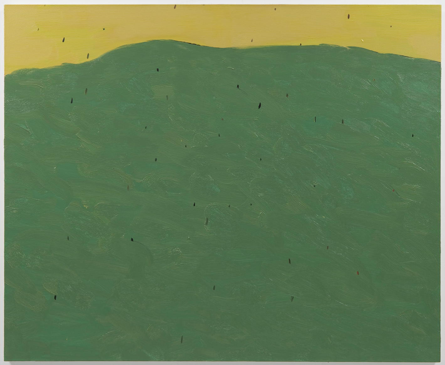 The Hill   2012 oil on canvas 44 x 55 in/112 x 140 cm