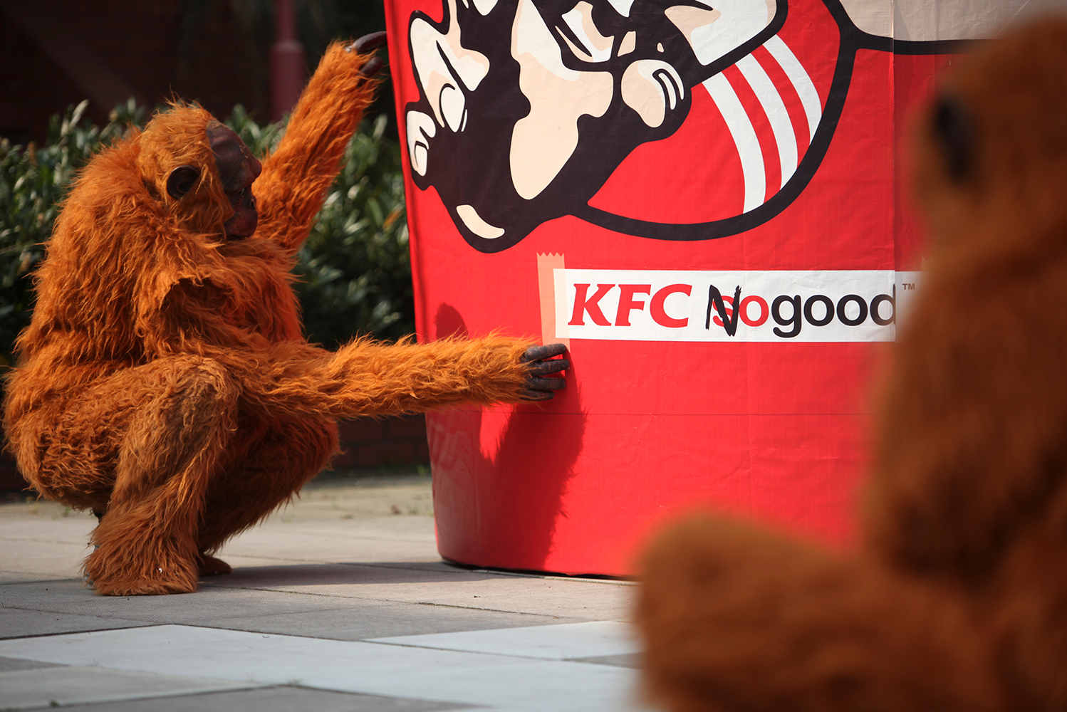 Campaign_Greenpeace_Forests_KFC_NoGood.png
