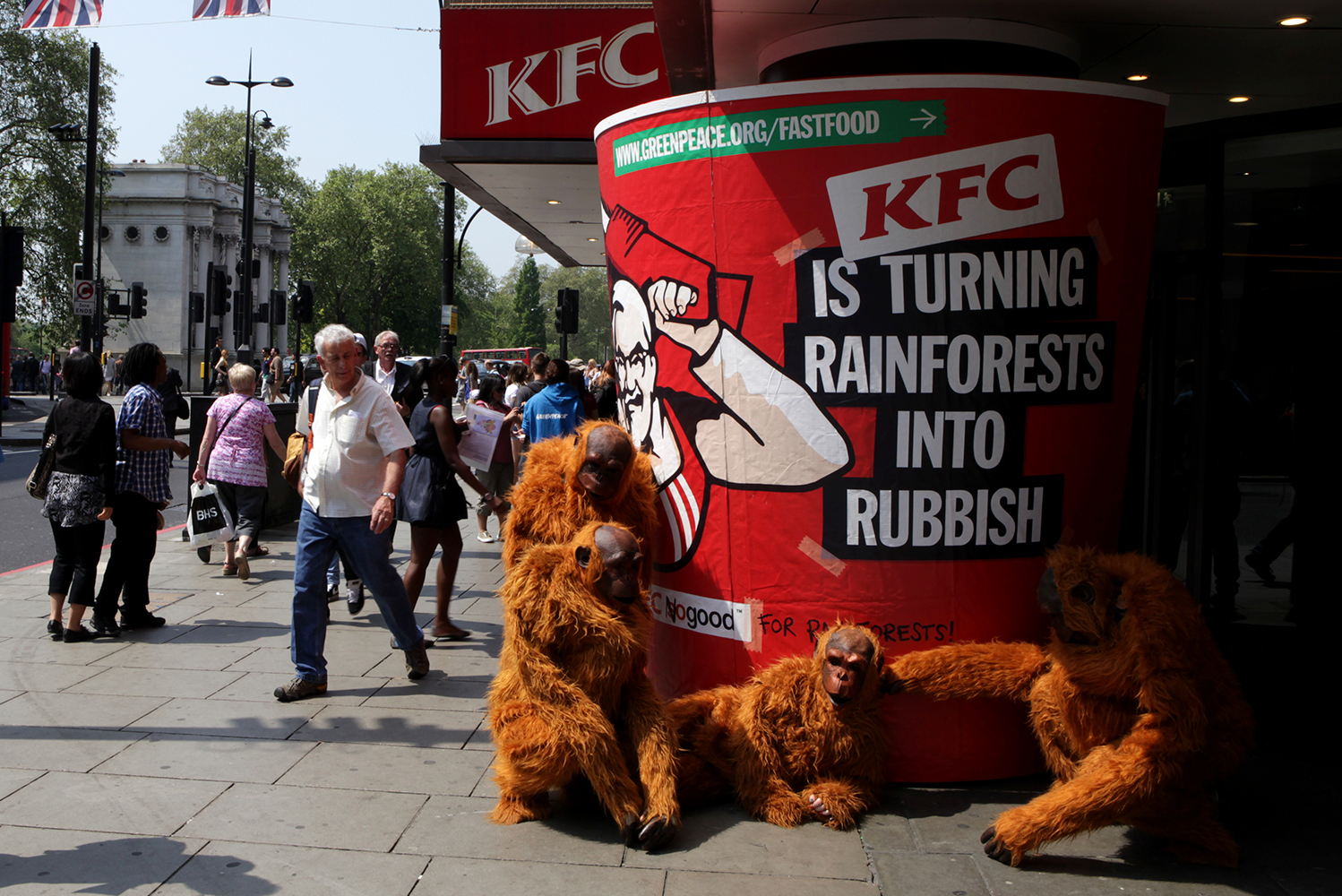 Campaign_Greenpeace_Forests_KFC.png
