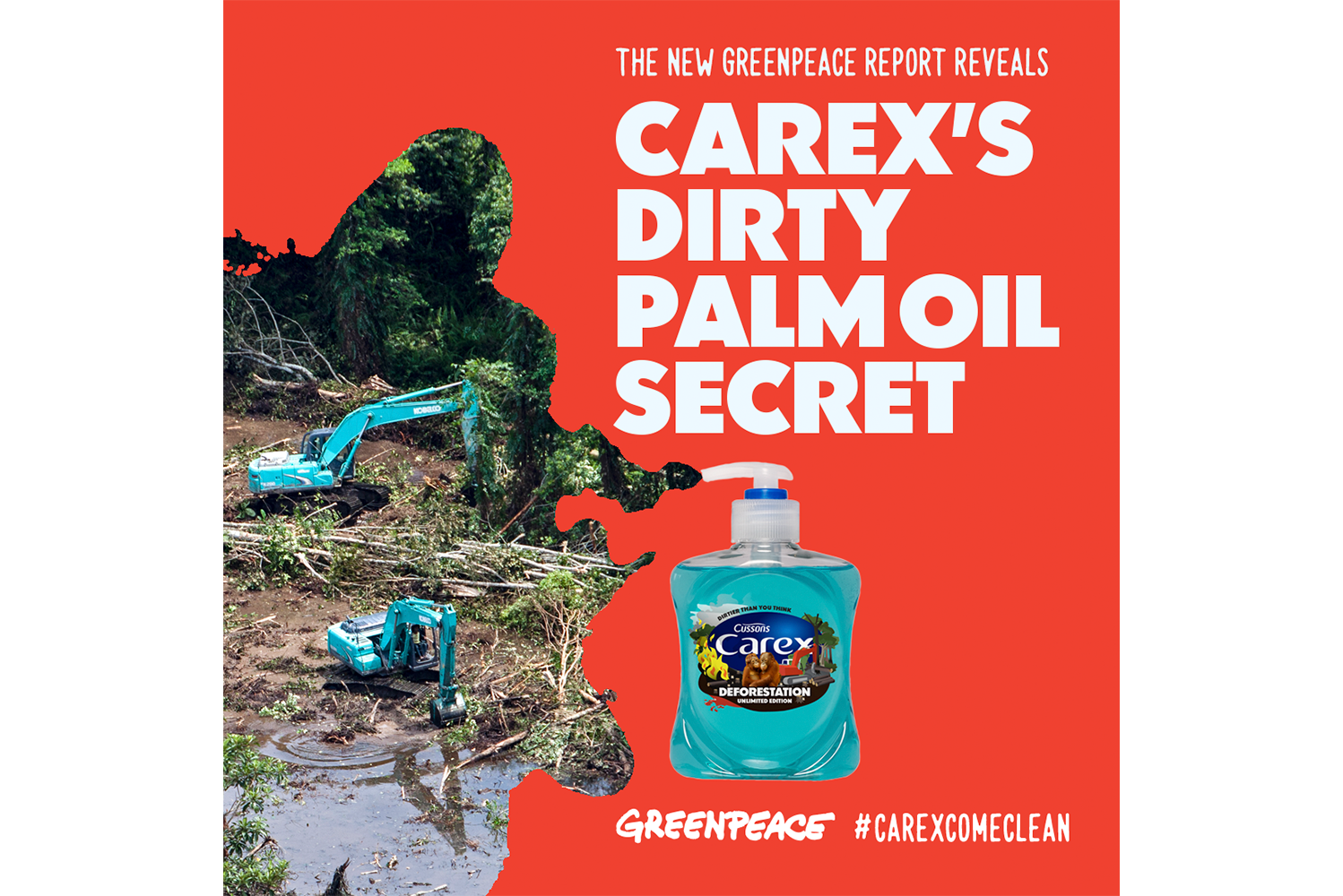 Greenpeace_Forests_Carex_Campaign_Macro.png