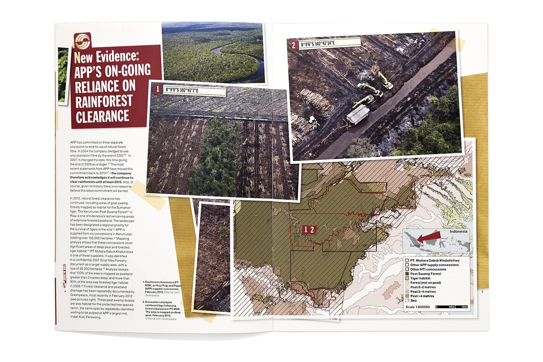 Greenpeace_KFC_Report_2.jpg
