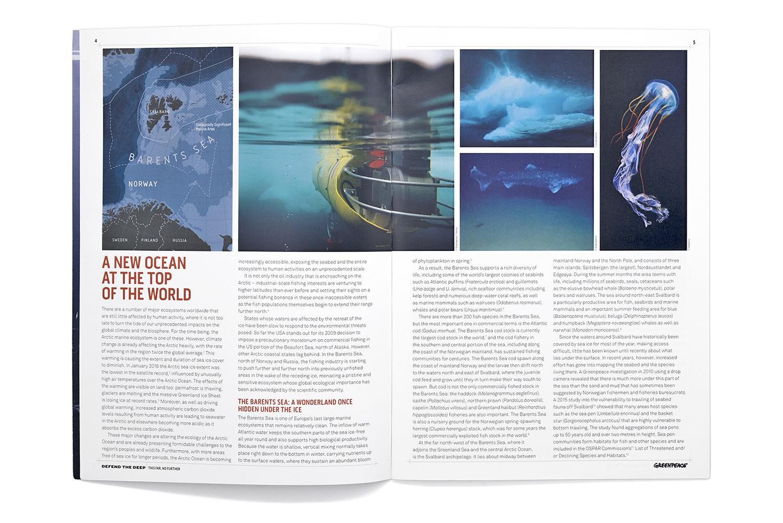 Greenpeace_Report_Arctic_1.jpg