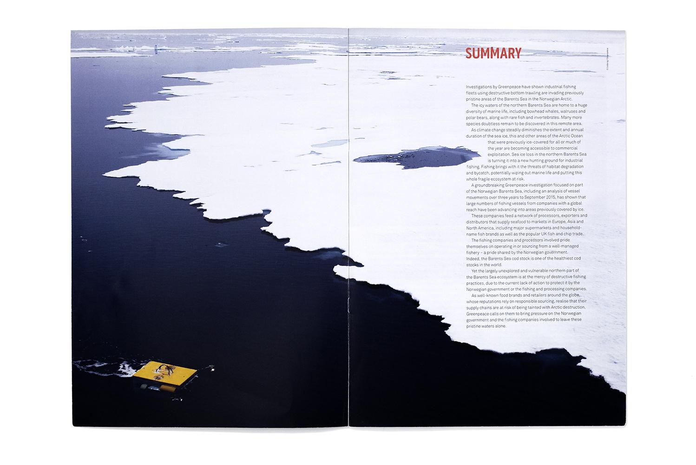 Greenpeace_Report_Arctic_Summary.jpg