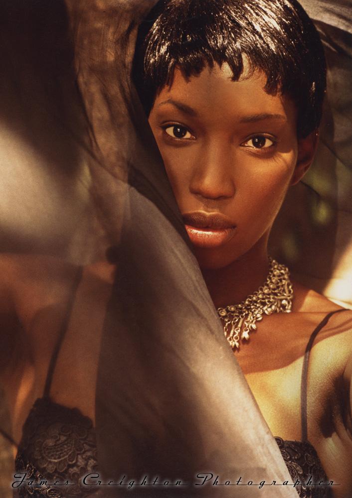 black beauty WS.jpg