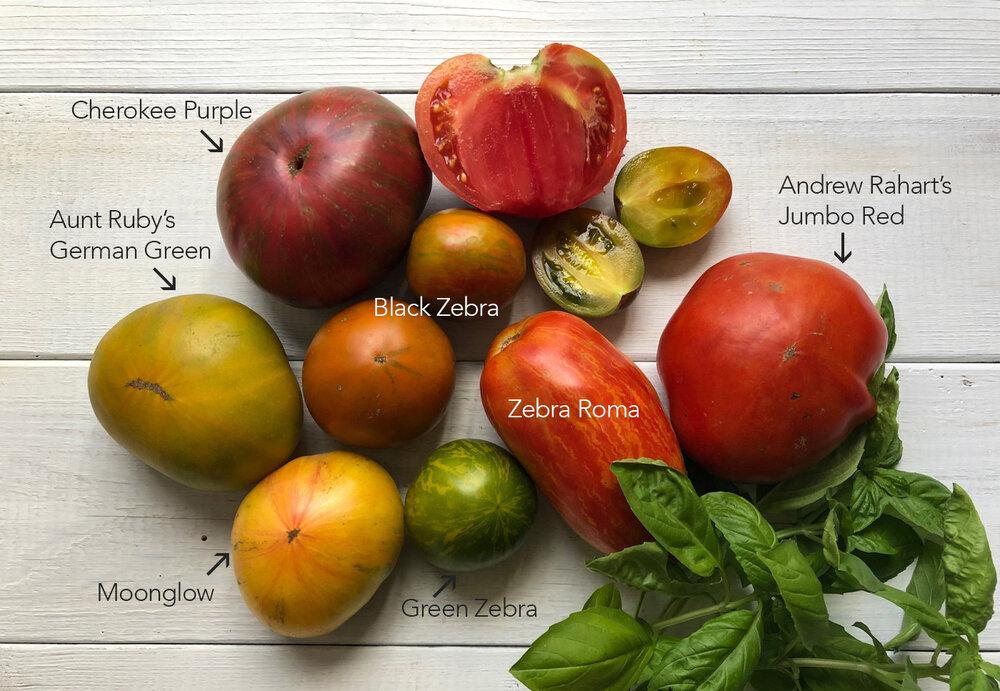 heirloom_tomato_salald-varieties.jpg