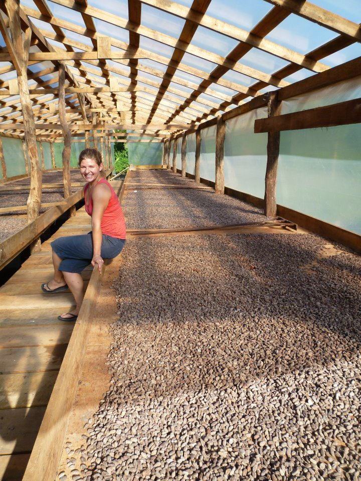 Raw cocoa beans drying in the sun at Maya Mountain Cacao's production facility in Punta Gorda, Belize (2012)