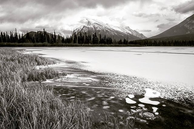 Once upon a time in Banff. Frozen bubbles and moody clouds. What more could a landscape photographer want?