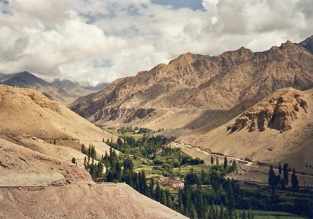 alchi ladakh