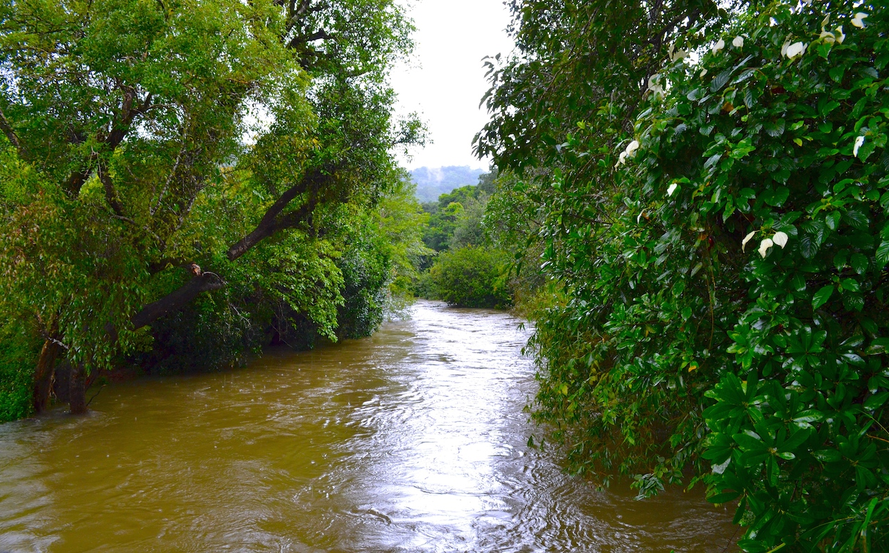 coorg travel service