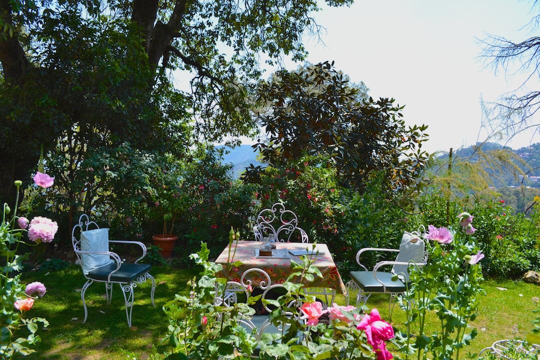 charming homestay himachal