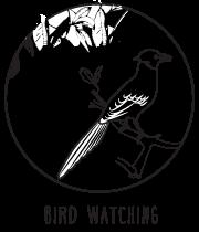 bird watching getaways maharashtra