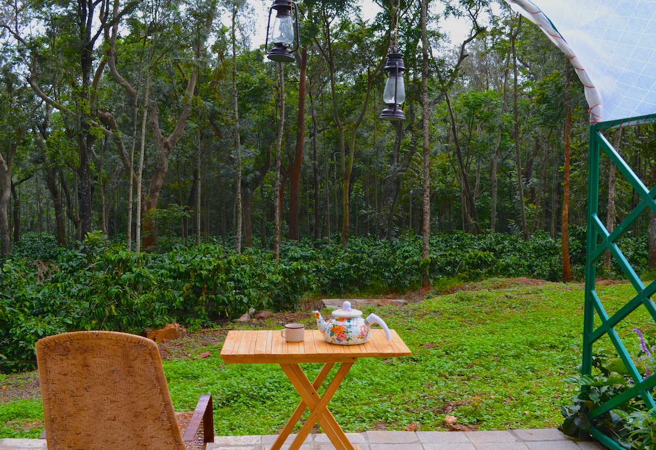 luxury homestay on coffee estate chikmagalur