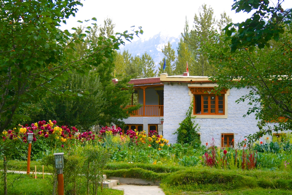 charming homestay in hunder nubra