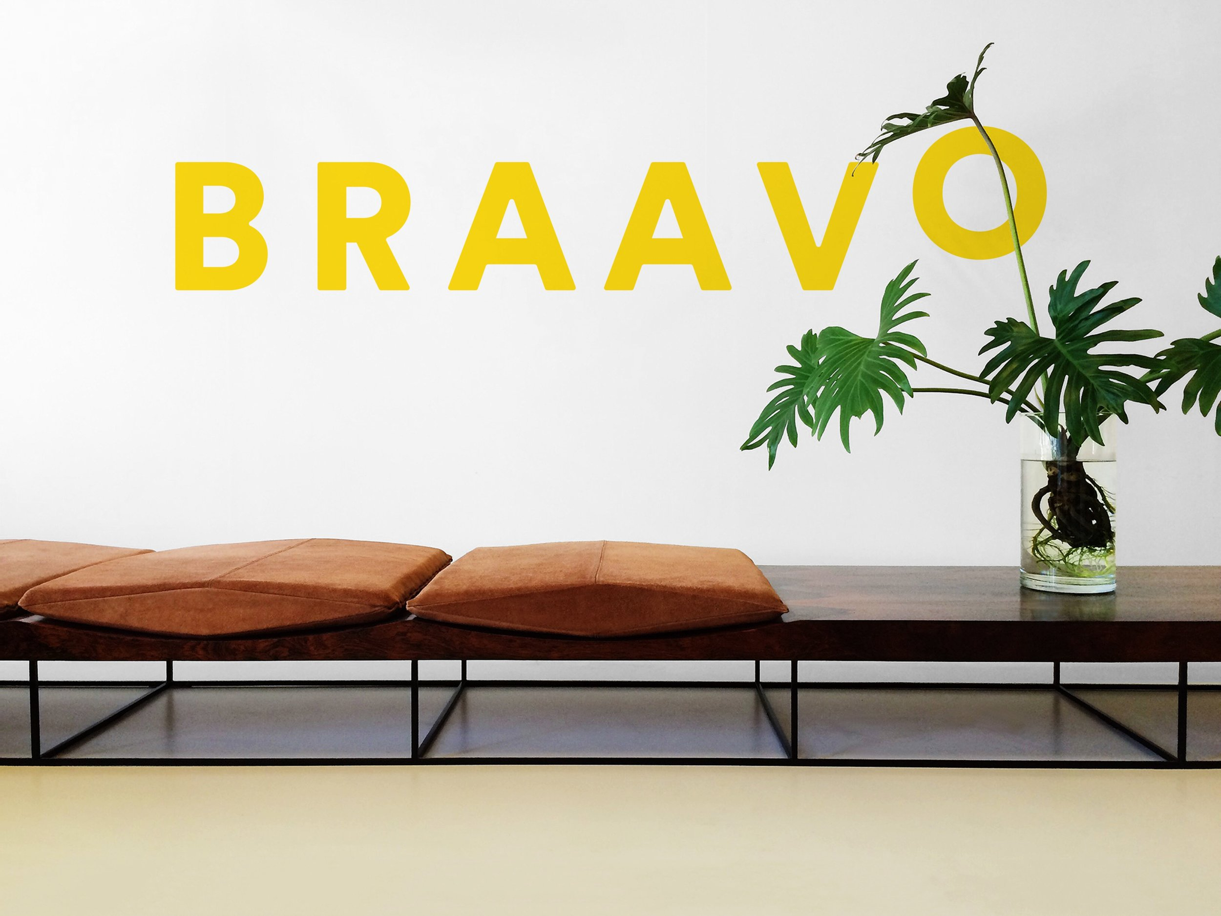 Braavo Branding + Web Design