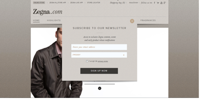 Figure one shows the  homepage of the Zegna website . Immediately the visitor is approached in an almost personal way, asking whether they would like to be kept informed. A newsletter – if it does not become 'spam-like' – can certainly be used to establish a greater sense of an enhanced experience for the customer (Tsai, 2005), as mentioned before.
