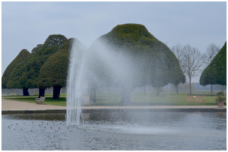 Hampton Court Palace Gardens.jpg