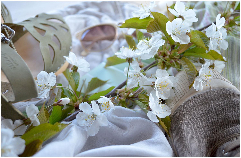 Cherry Branch Colour Palette.jpg