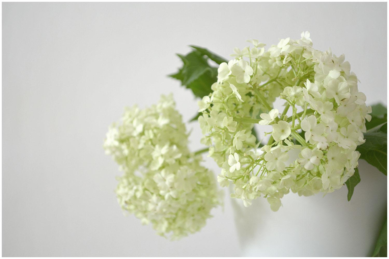 Pale green.jpg