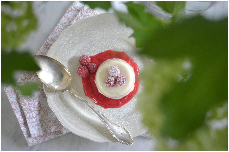 Vanilla Bavarois with raspberry sauce.jpg