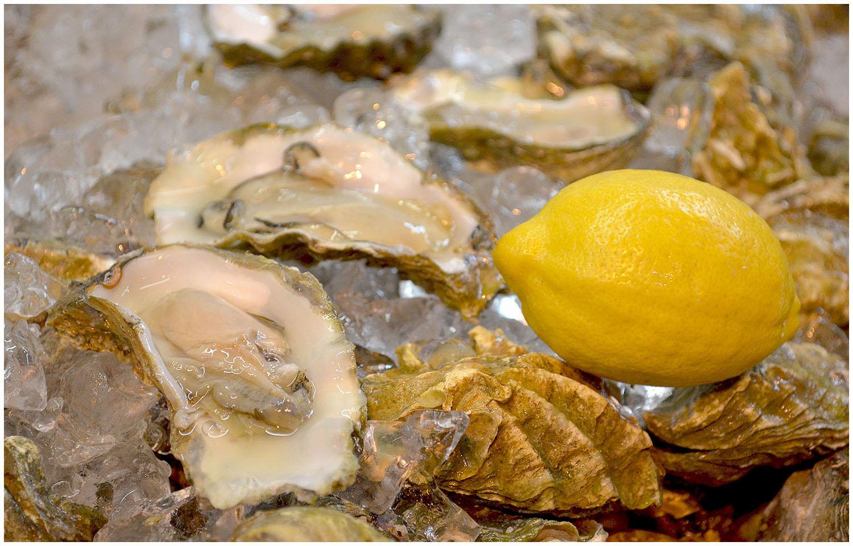 Fresh Oysters.jpg