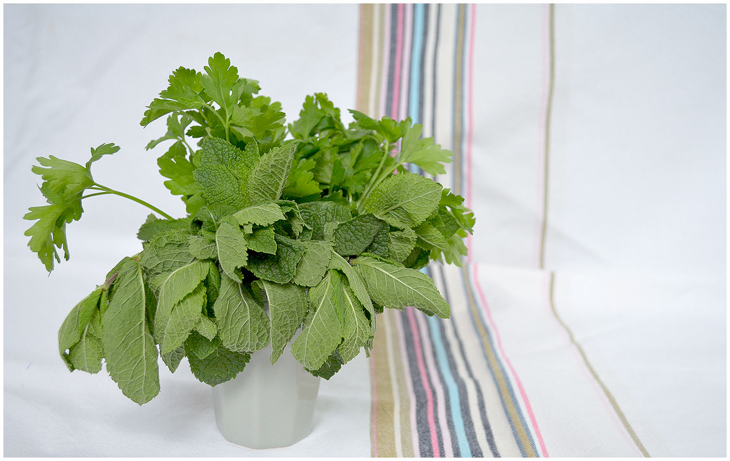 Mint and parsley.jpg