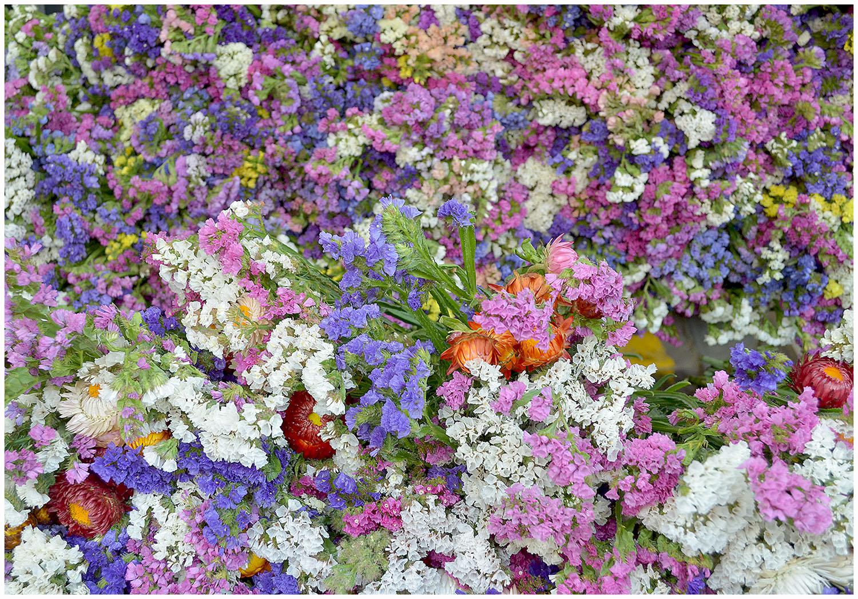 Colourful Summer Flowers.jpg