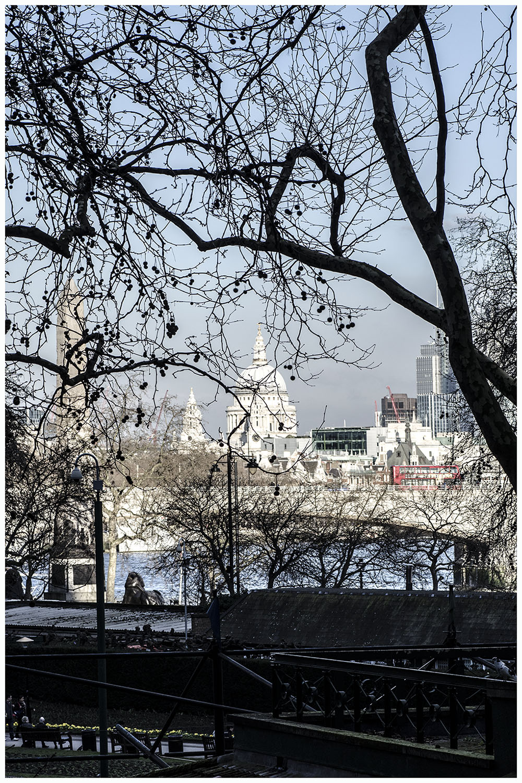London Birthday 1.jpg