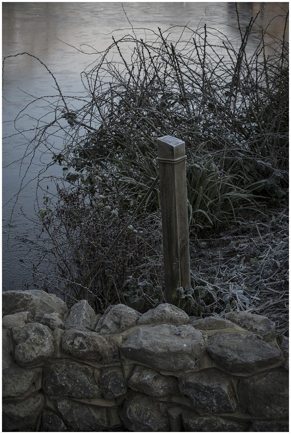 Wintery London Park