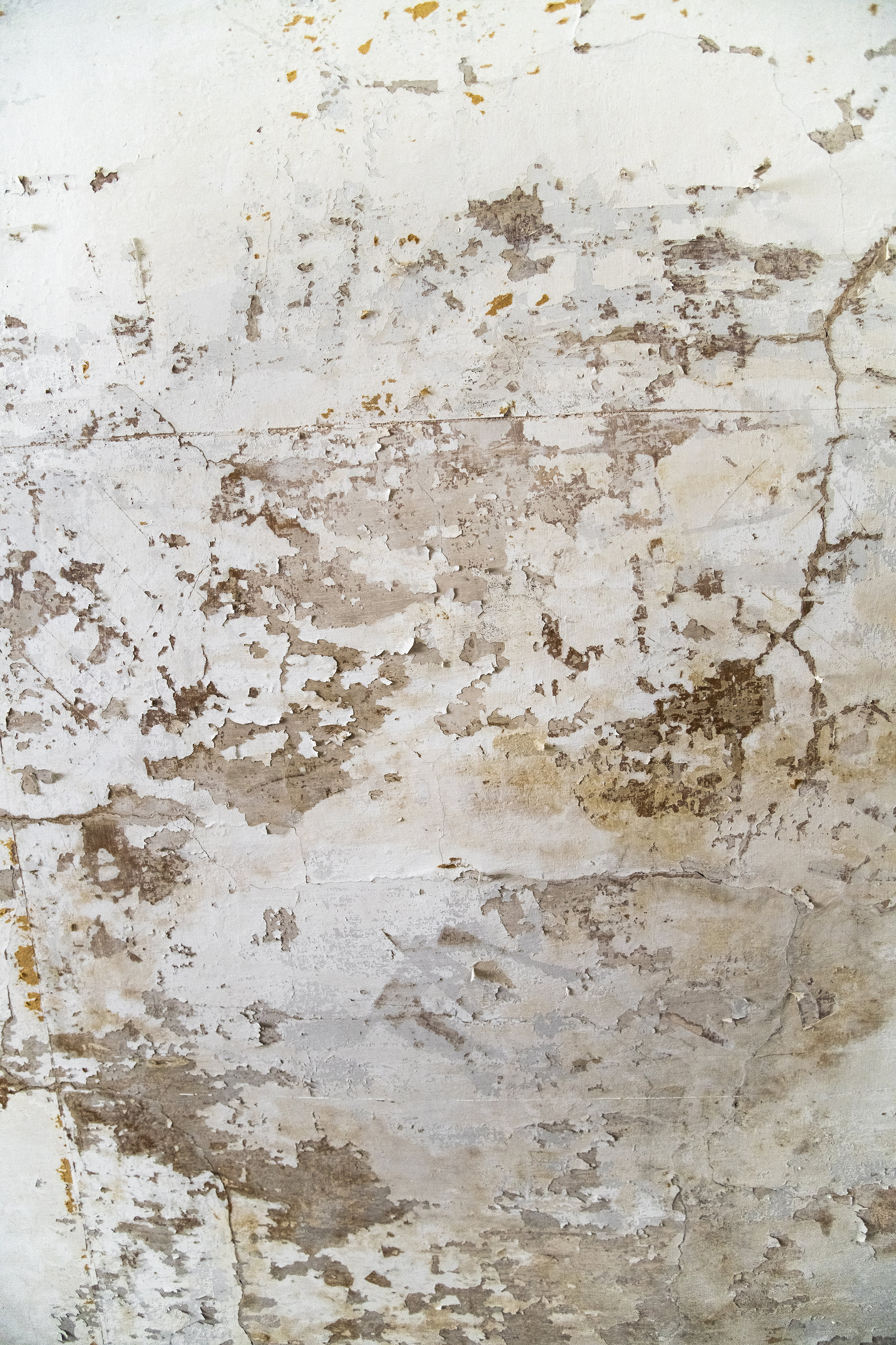 Manor House Textures 9.jpg