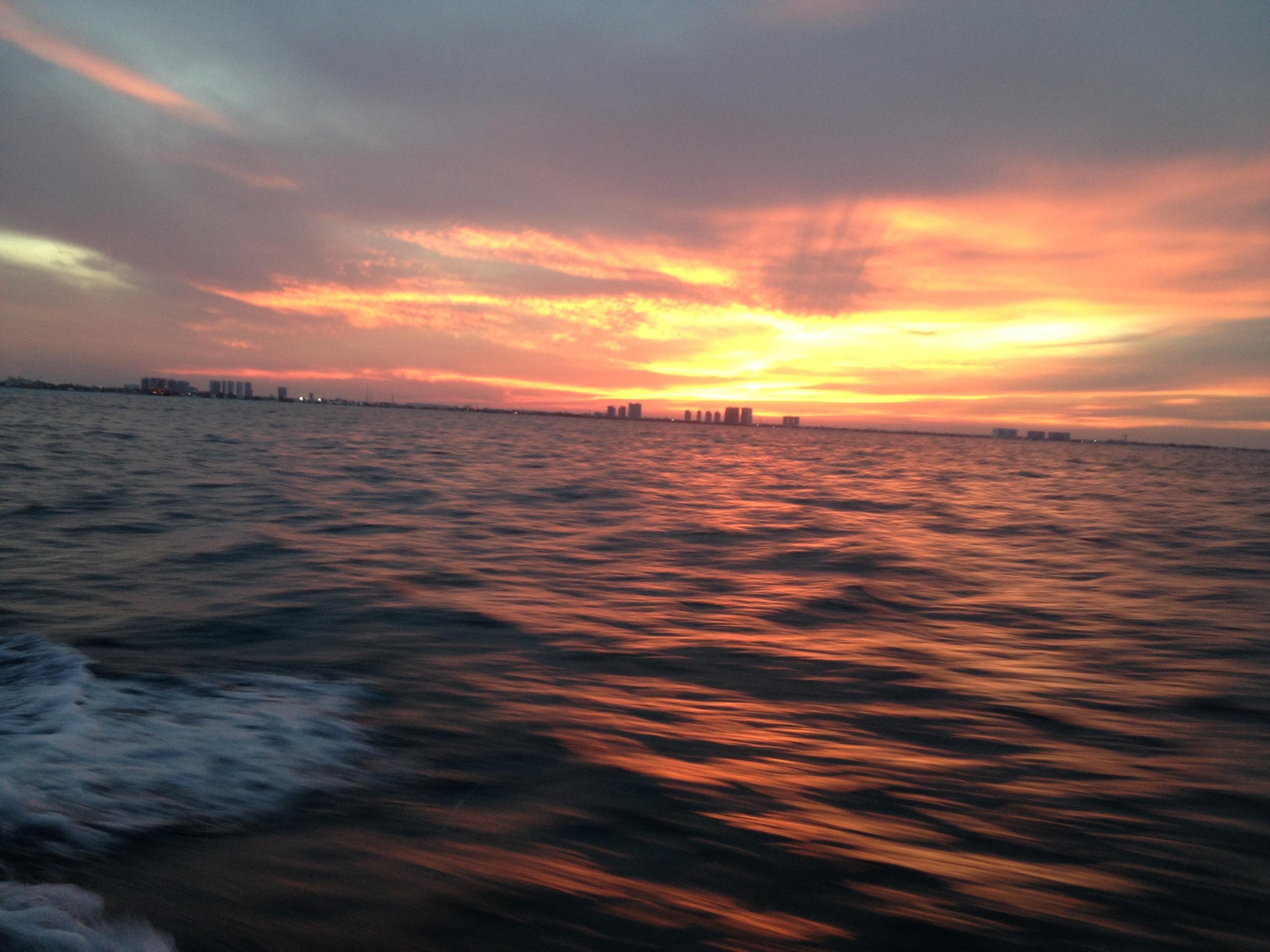 Cancun Night Dive