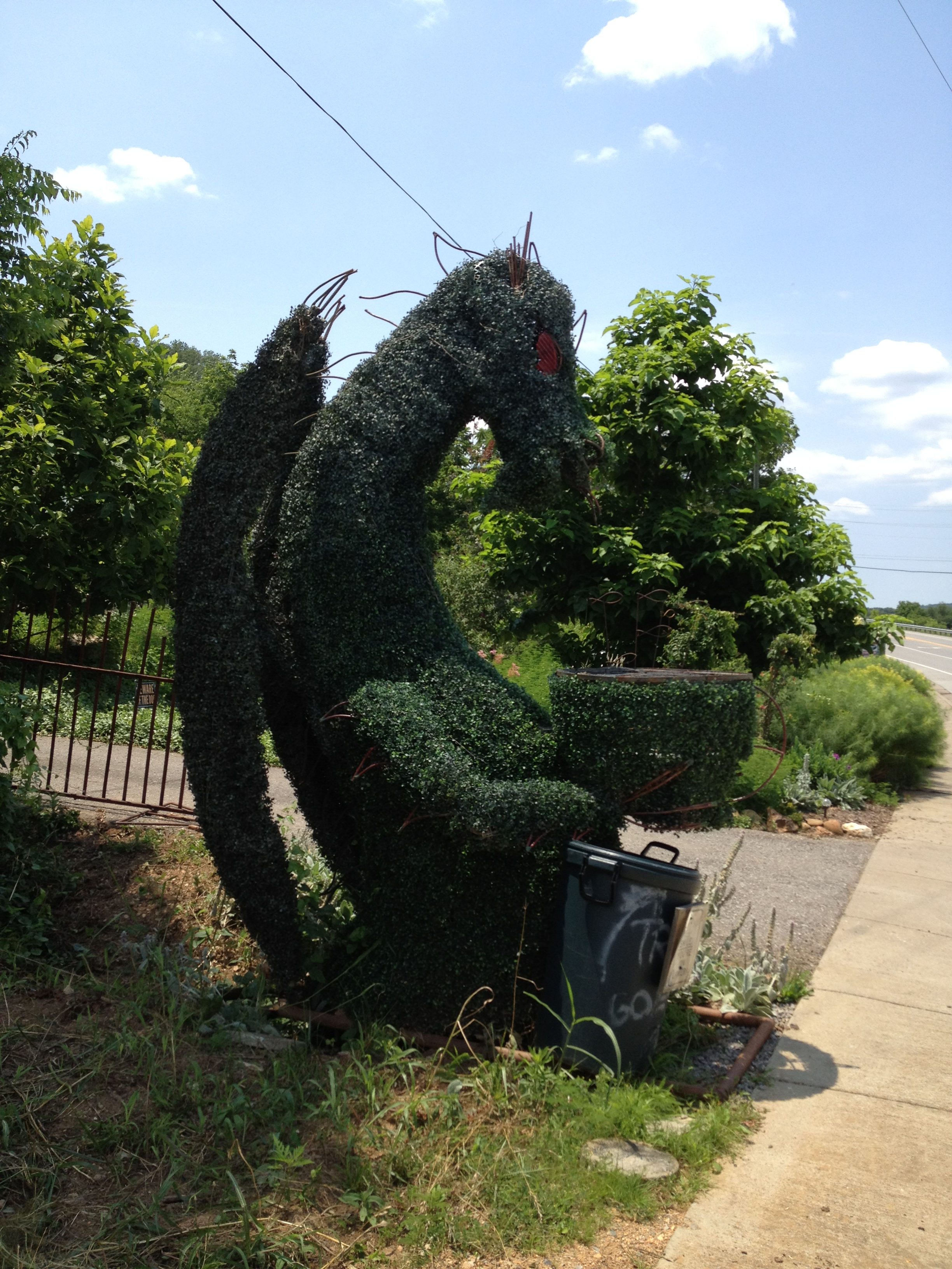 Dragon Bush with a grill