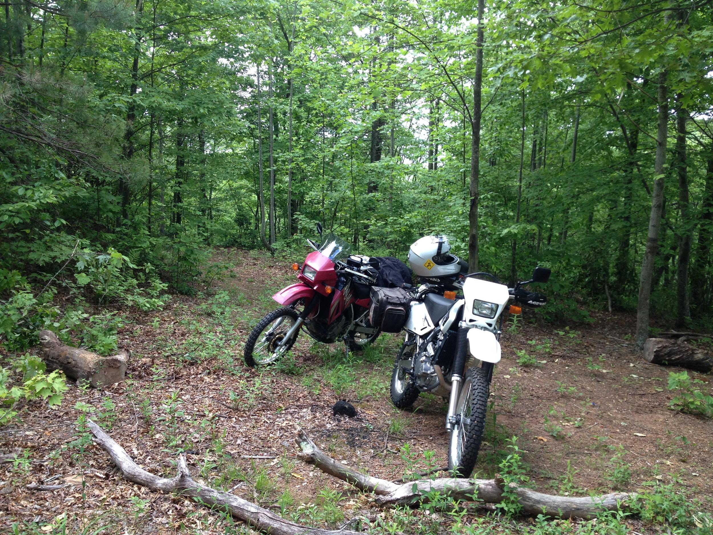 Quality Trail Time