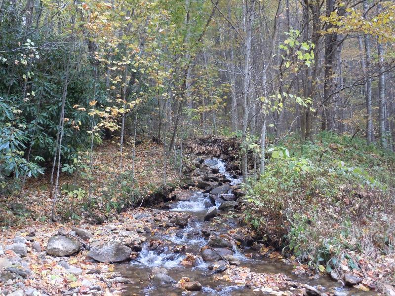 Creek flowing across the road.