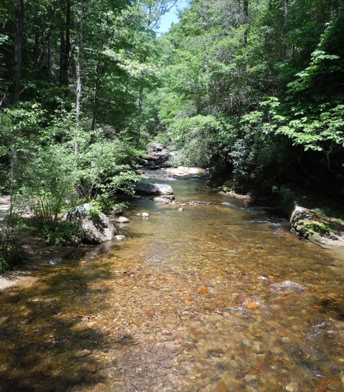 The River in Bad Creek