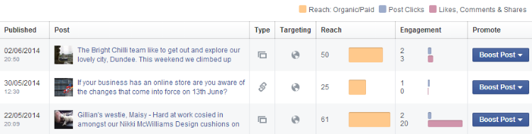 Bright Chilli Facebook Insights page