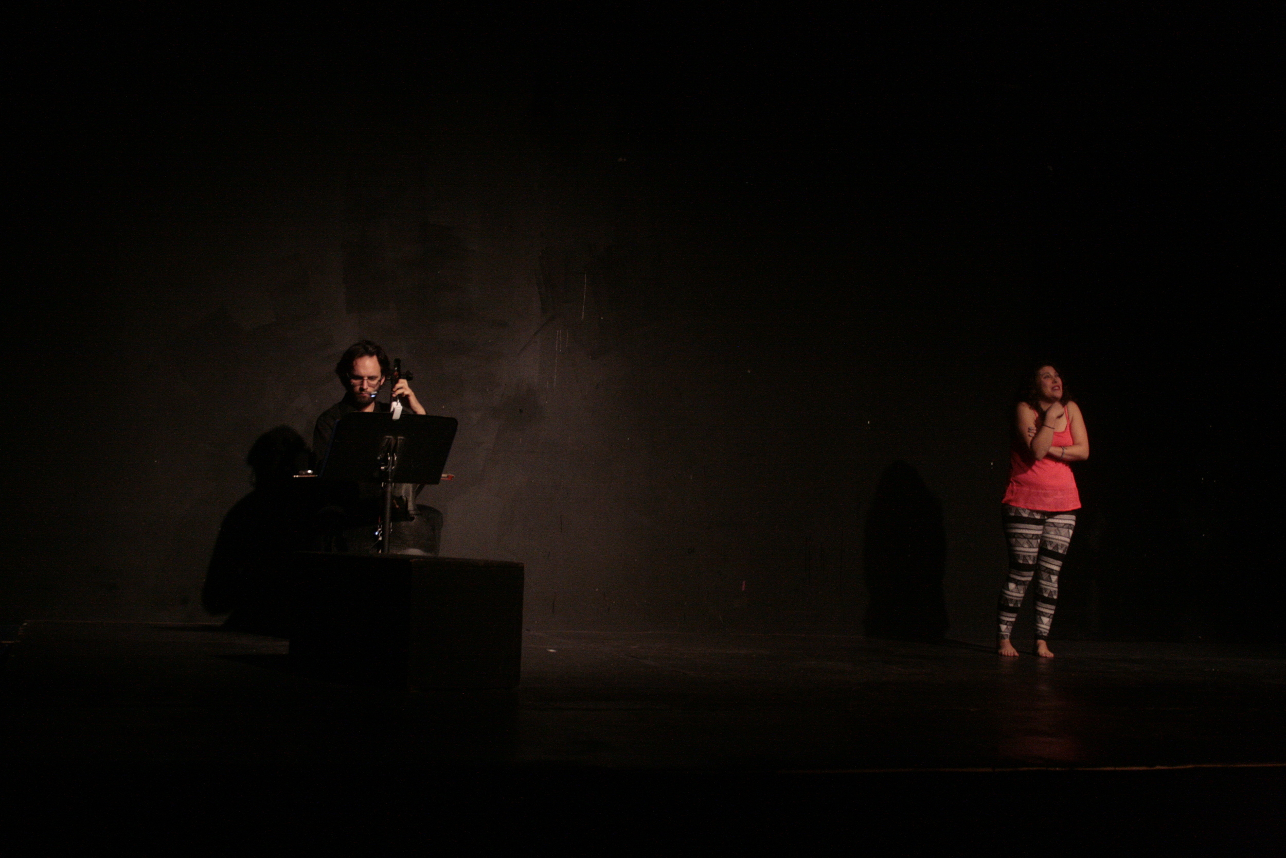 """O'Loughlin performing """"Natural Novice"""" in the 2013 Charm CIty Fringe Festival."""