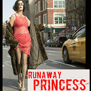 Mary Goggin -  Runaway princess, a hopeful tale of heroin, hooking & happiness     As a massive reaction to sexual repression, Mary takes us from the Irish famine, to 70s pimps, to finding joy.   When?    Thursday, 10/17 - 8:15 PM  Friday, 10/18 - 10:00 PM  Saturday, 10/19 - 4:45 PM  Sunday, 10/20 - 3:00 PM    Where?   Howard Row  409 N Howard St