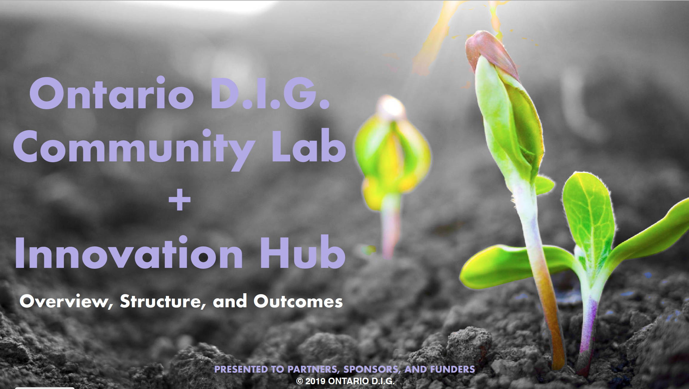 Click on the image to learn about the Ontario D.I.G. project