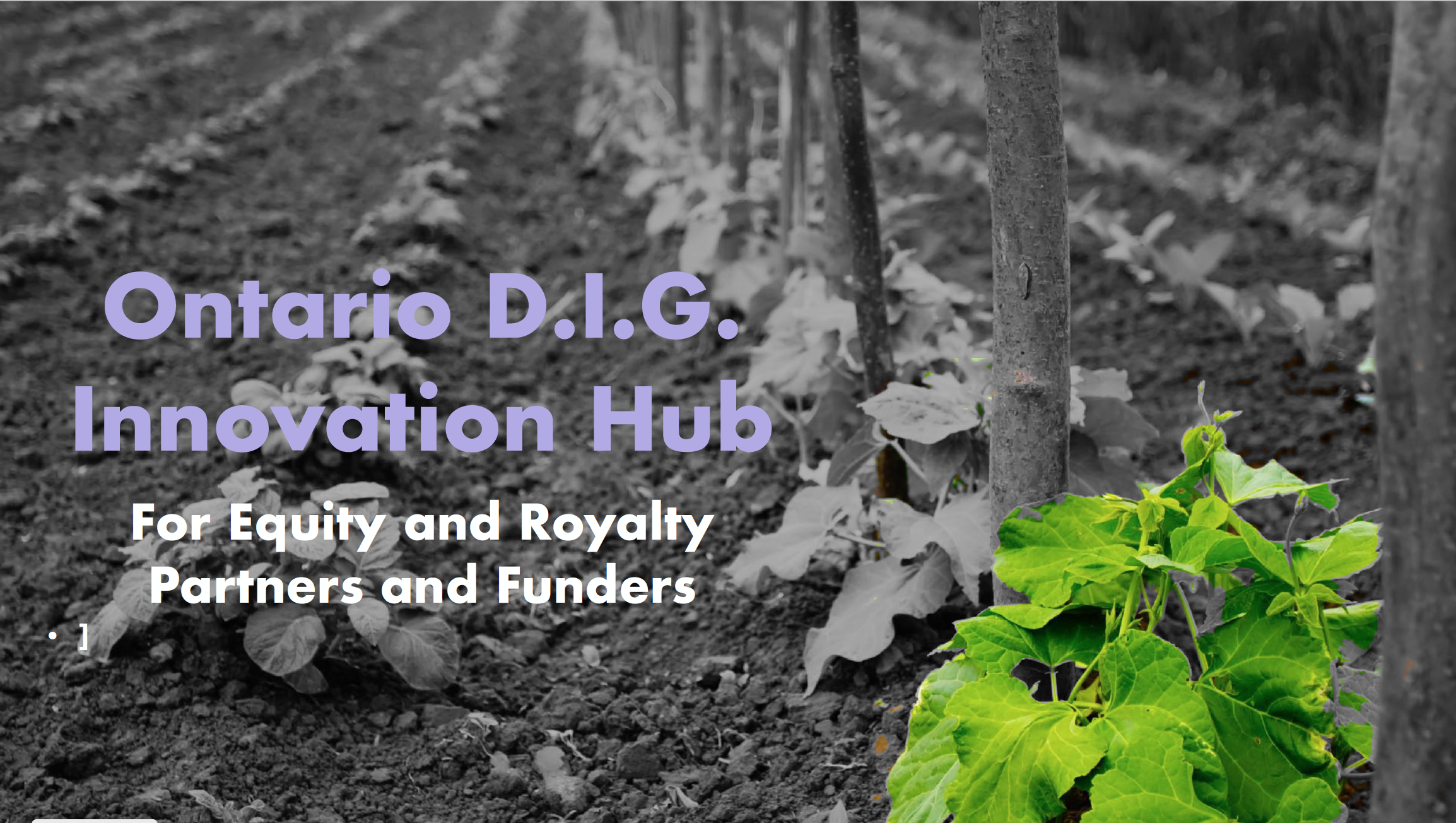 Click on the image to view the presentation and learn about how you can partner with us in the Innovation Hub.