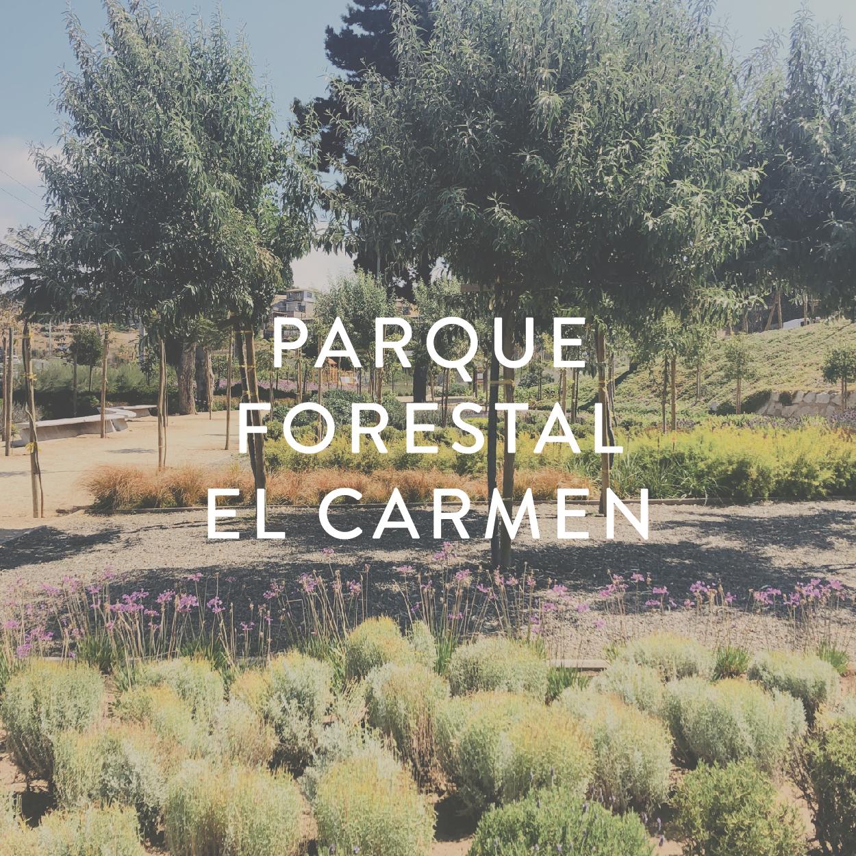 Imagenes Portada Proyectos-10.jpg