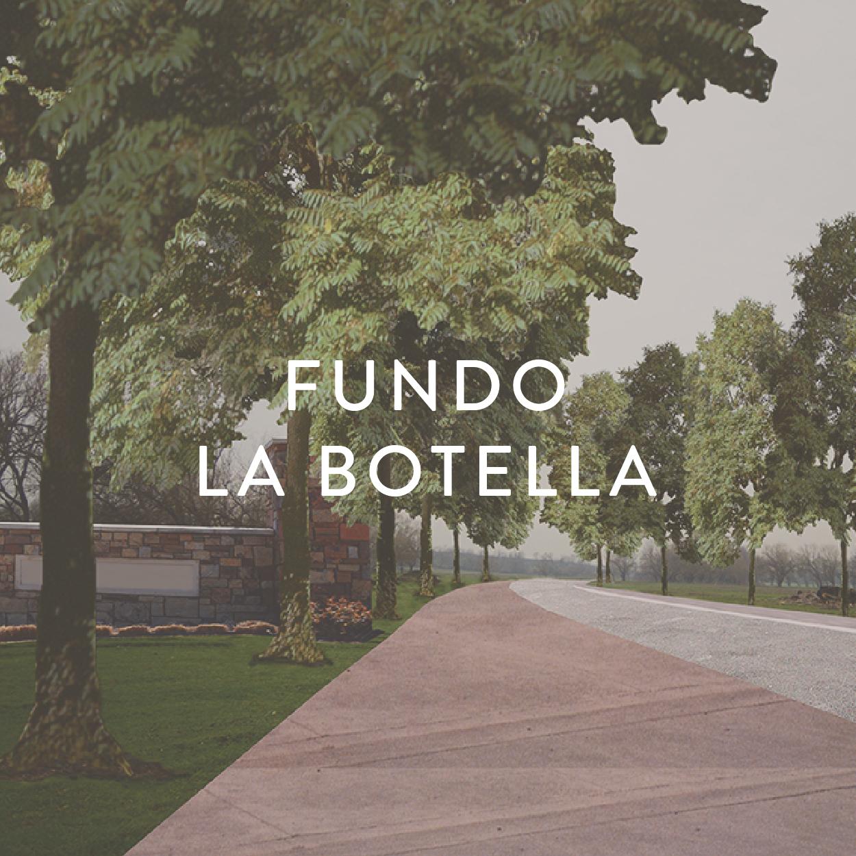 Imagenes Portada Proyectos-21.jpg