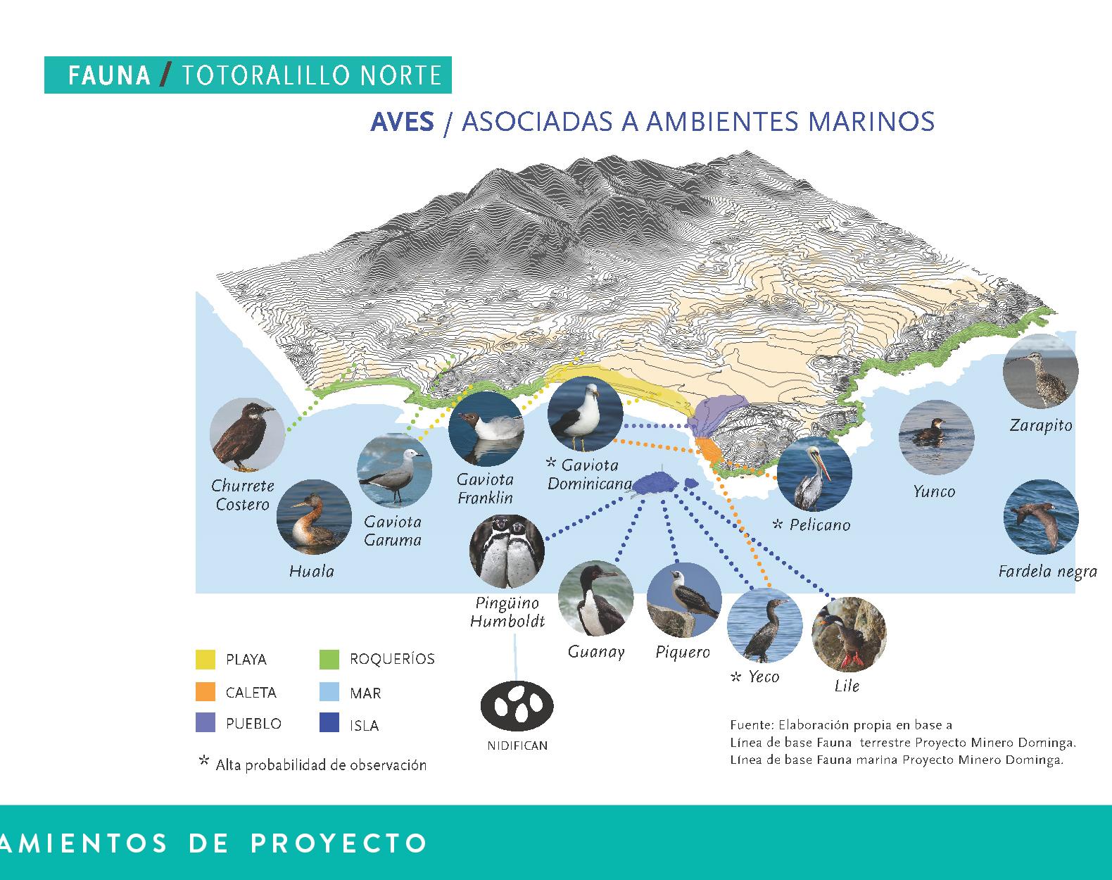 Proyectos Pagina WEB DISEÑO URBANO-07.jpg