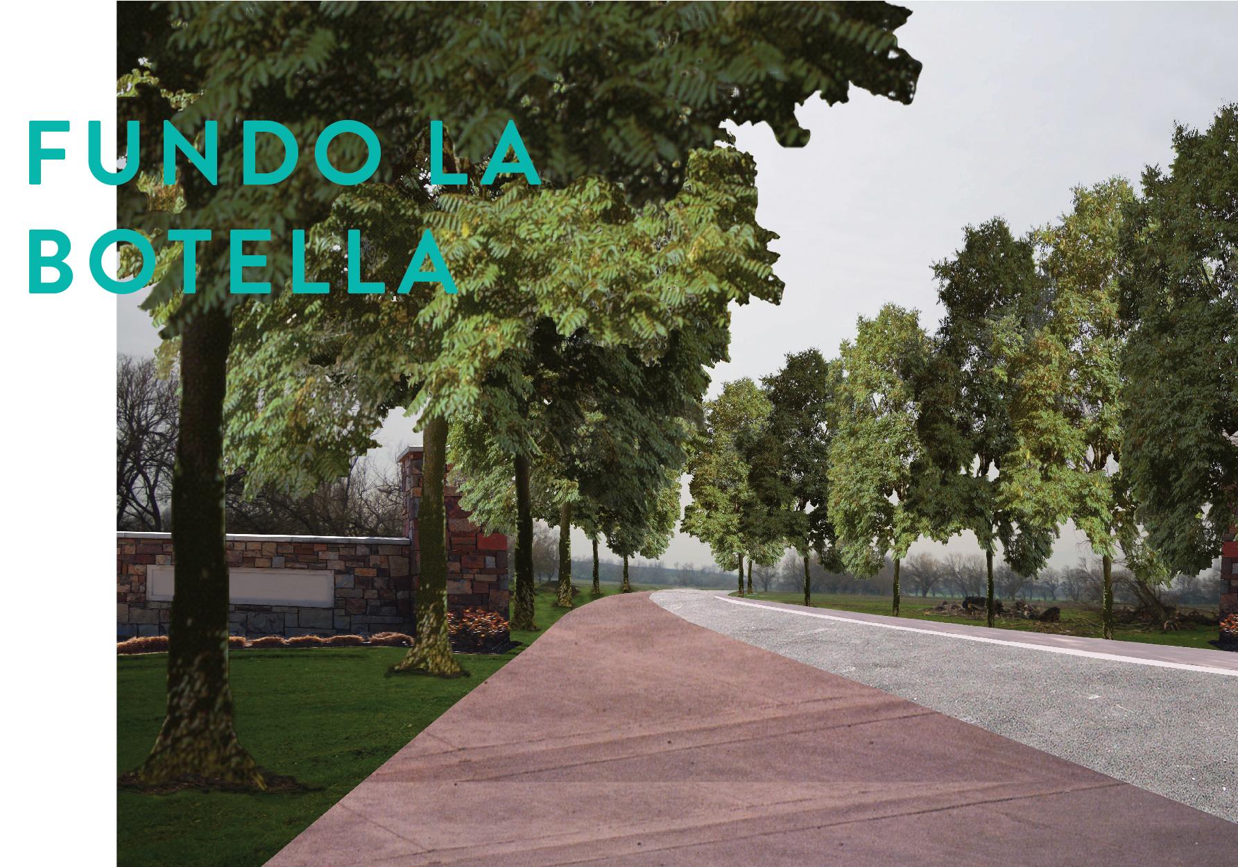 Formato Panoramico FUNDO LA BOTELLA-01.jpg
