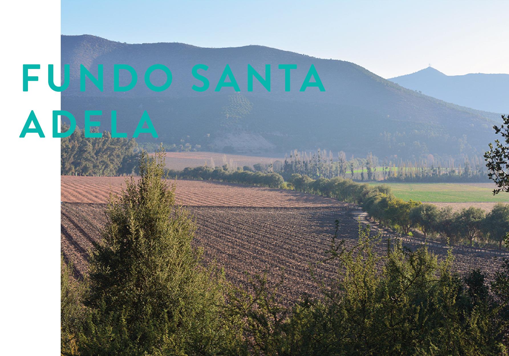 Formato Panoramico SANTA ADELA-01.jpg