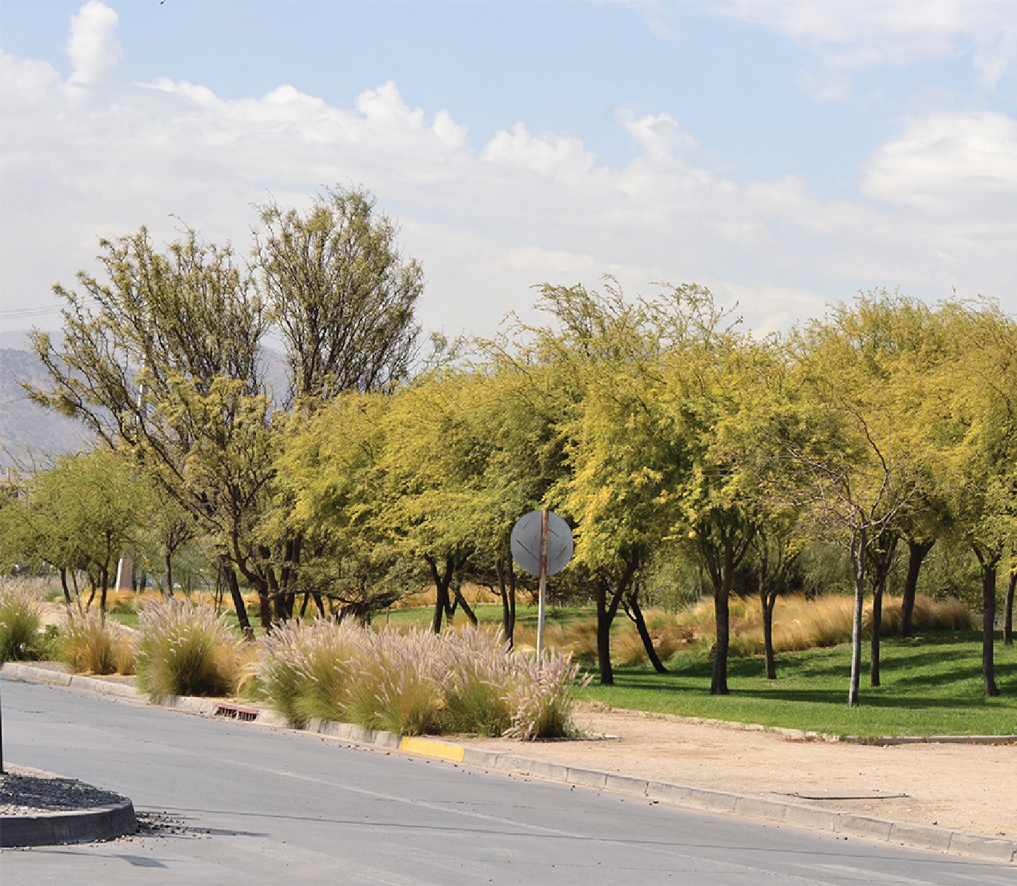 Formato Panoramico VALLE GRANDE-11.jpg