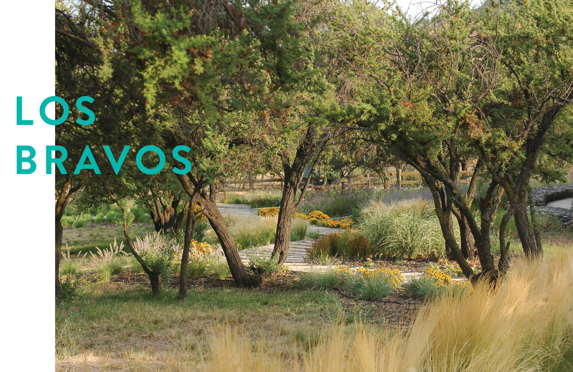 Formato Panoramico LOS BRAVOS-01.jpg