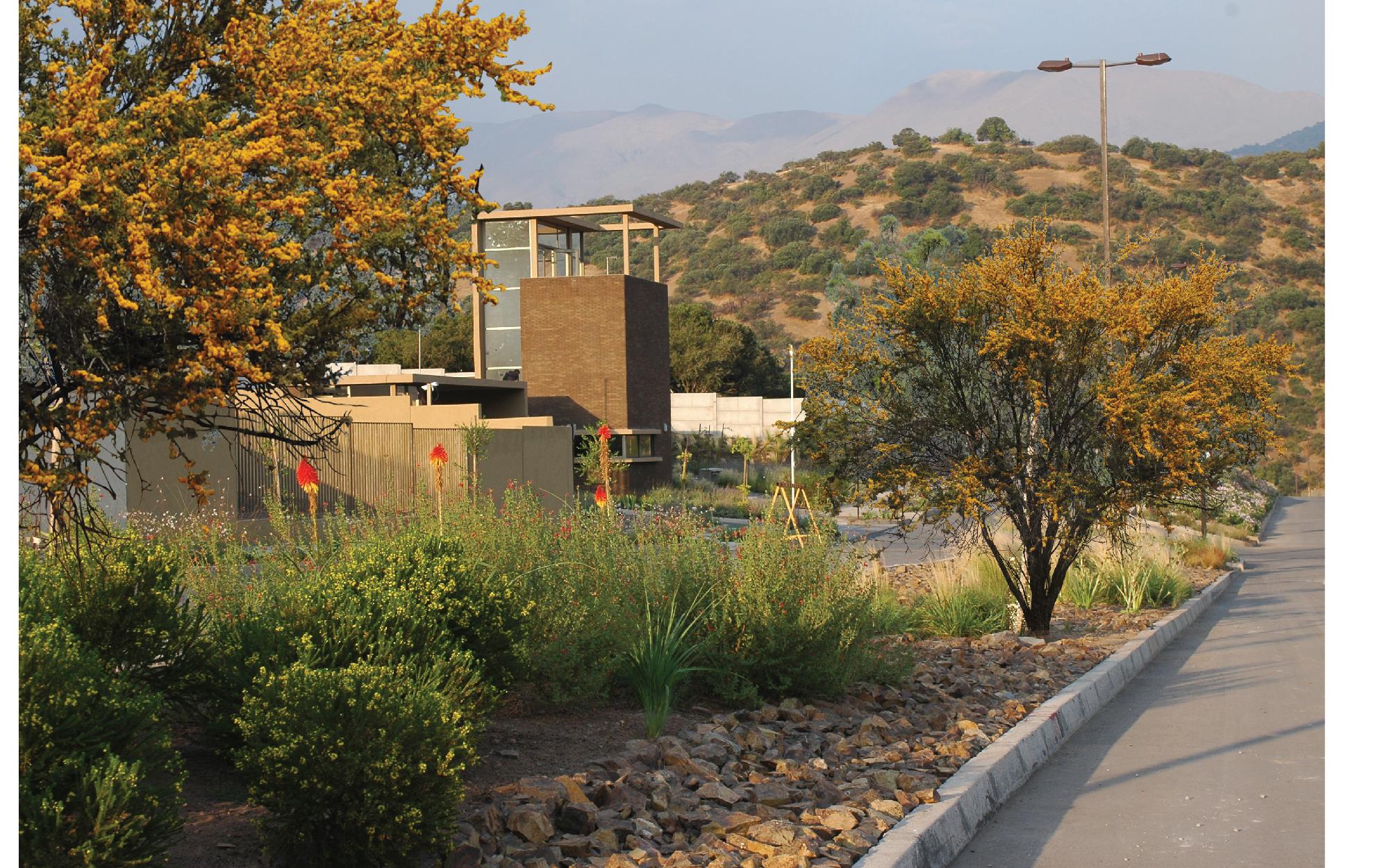 Formato Panoramico LOS BRAVOS-15.jpg